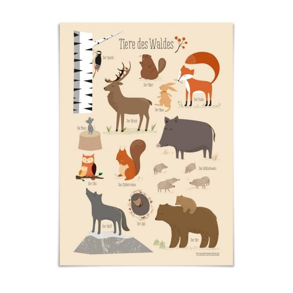 "Poster ""Tiere des Waldes"" (DIN A3)"